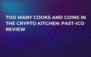 Too many Cooks and Coins in the Crypto Kitchen: Past-ICO Review