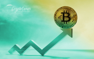 Bitcoin Price Increase: Actual Reversal or Dead Cat Bounce?
