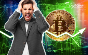 Bitcoin Price Rollercoaster Shakes Up All Investors, What to Expect?