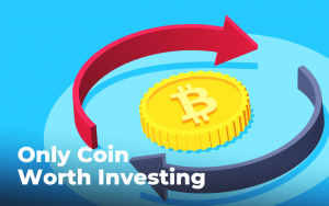Bitcoin Is the Only Coin Worth Investing in Says Jimmy Song as Altcoin Season Bubbles Under