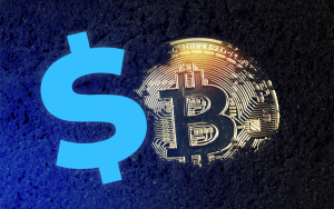 Expert: Bitcoin Is an Alternative to US Dollar Bubble