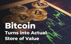 Bitcoin Turns into Actual Store of Value – 60% BTC Has Remained in Wallets at Least One Year