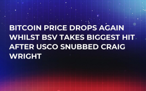 Bitcoin Price Drops Again Whilst BSV Takes Biggest Hit After USCO Snubbed Craig Wright