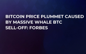 Bitcoin Price Plummet Caused by Massive Whale BTC Sell-Off: Forbes