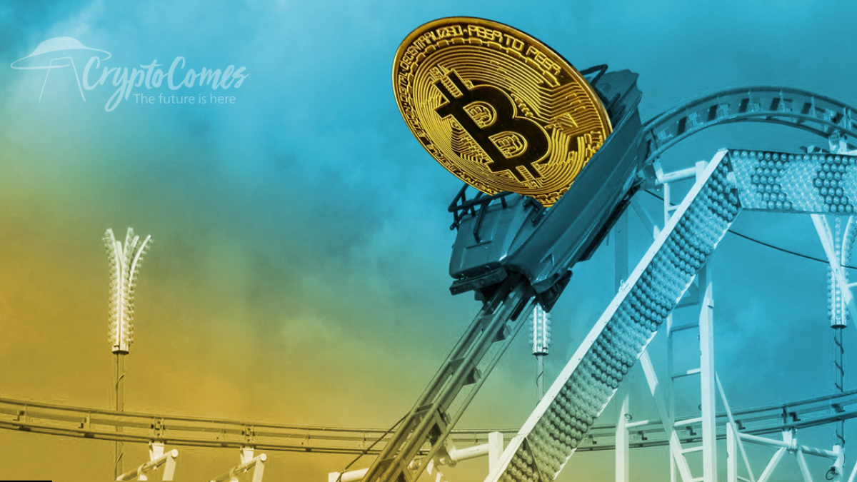 5 CryptoComes' CryptoTips on What to do When Market Plummets