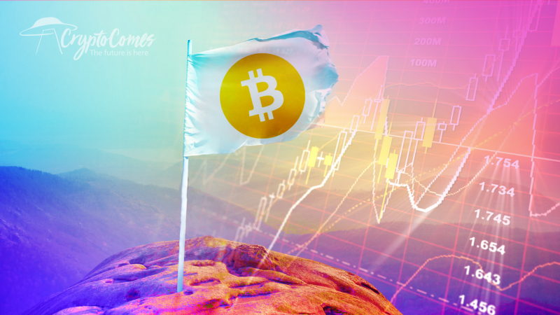 Slow But Steady: Bitcoin Price Reaches $11,000 on Low Volume Trades