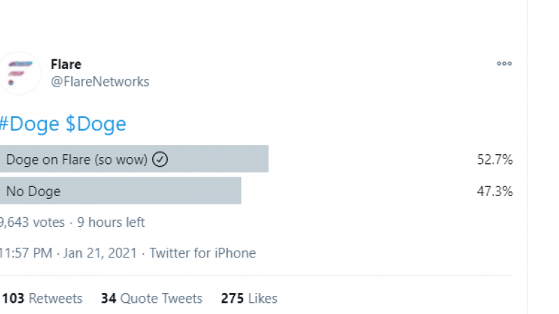 53% of Flare Community members are ready for the F-DOGE