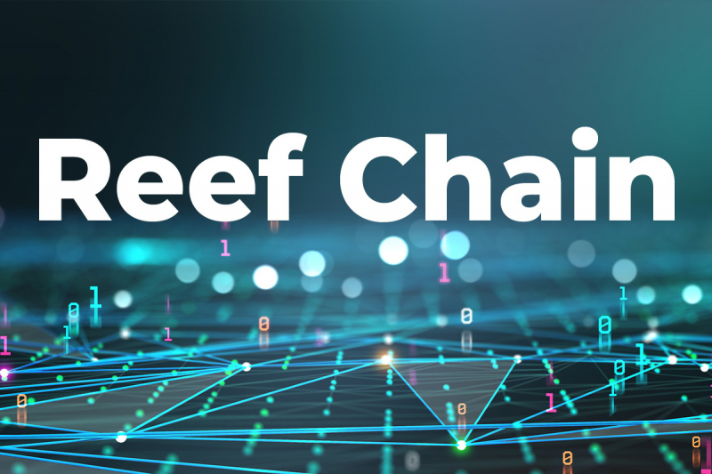 Reef Chain launches in May