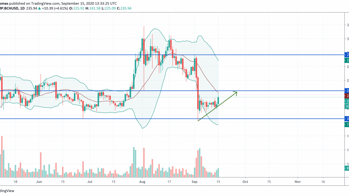 BCH/USD chart by TradingView