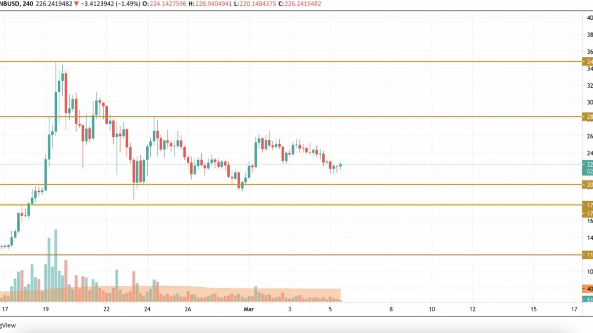 BNB/USD chart by TradingView