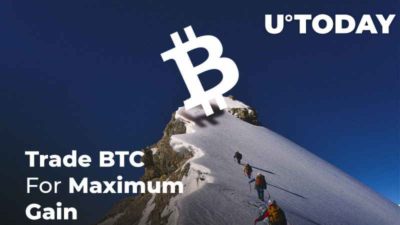 BTC Price Is Climbing to $8,600 Before the Dump. How to Trade BTC for Maximum Gains?
