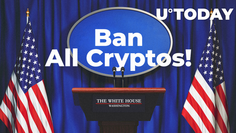 'Ban All Cryptos' Call Rings Out in US Congress: Reasons Why It Will Never Work