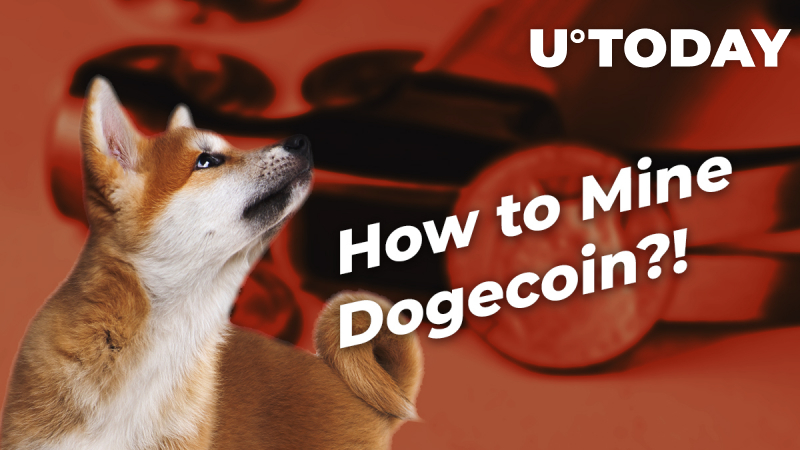 How to Mine Dogecoin: Complete Guide For Beginners
