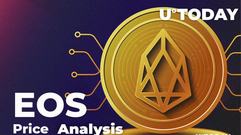 EOS Price Analysis: How Much Might EOS Cost in 2019-20-25?