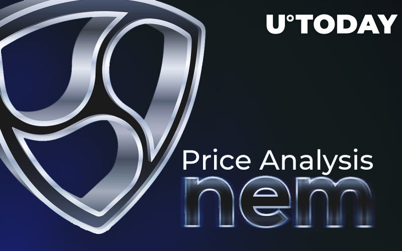 NEM Price Analysis: How Much Might be the NEM Cost in 2018\2020?