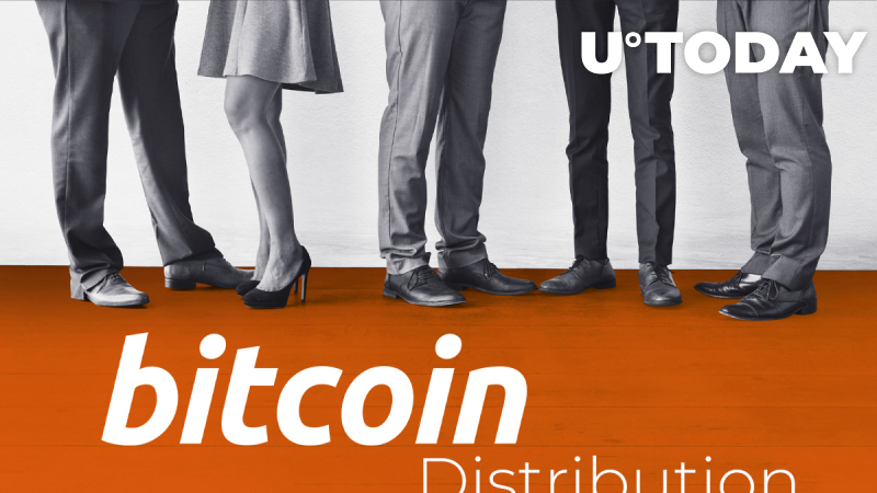 Bitcoin Distribution: 40 Percent of all BTC Controlled by 2,000 People – Will BTC Really Change the World?
