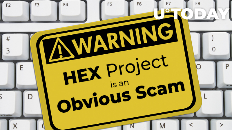 HEX Project is an Obvious Scam: IOTA Founder. Crypto Community Seconds