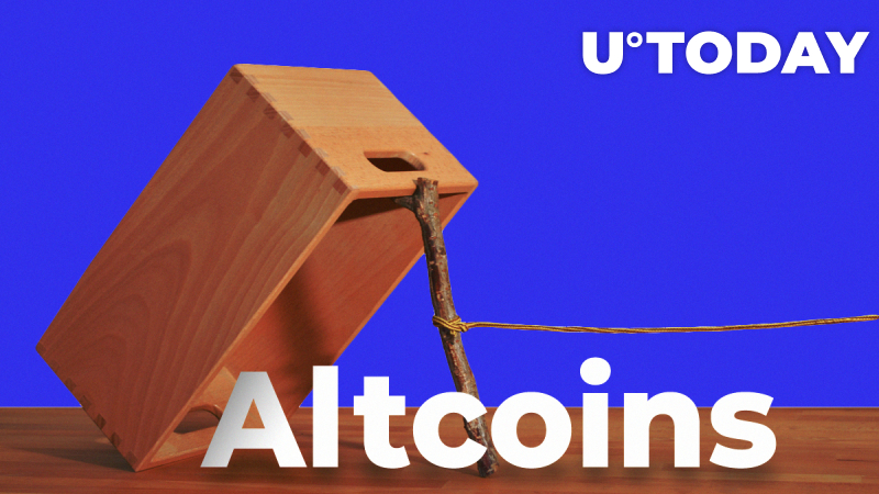 Altcoins May Move Up Hard Because of Greed: Analyst