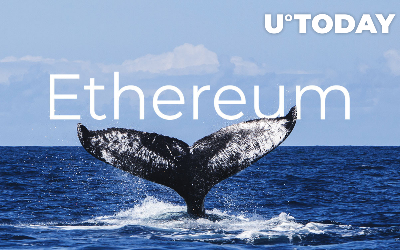Ethereum (ETH) Whales Accumulating, Not Selling, Report Says