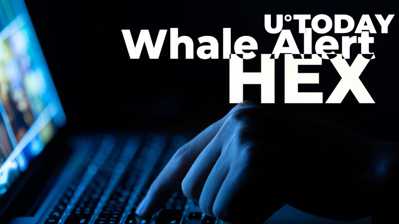 Whale Alert Removes HEX Crypto Transactions, Implying Coin's Dubious Nature