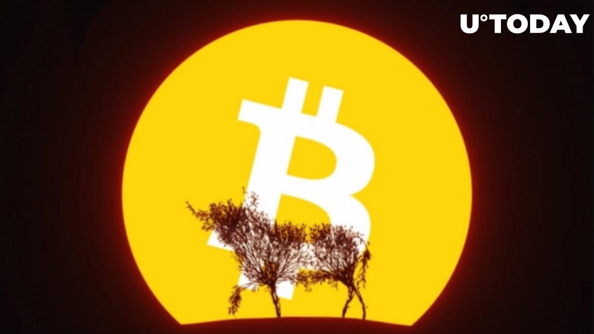 Bitcoin Price Undergoing Bullish Consolidation, Says Trader Scott Melker