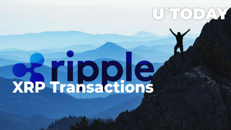 Ripple's Top Exec: Growth in Number of XRP Transactions More Important Than Rise in Notional Volume