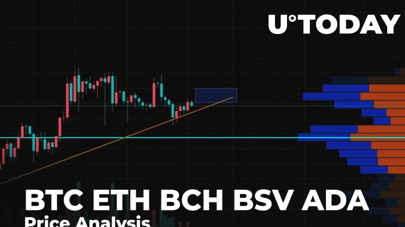 BTC, ETH, BCH, BSV, ADA Price Analysis: Is Growth for Altcoins Gonna Pause After Bitcoin (BTC) Becomes More Volatile?