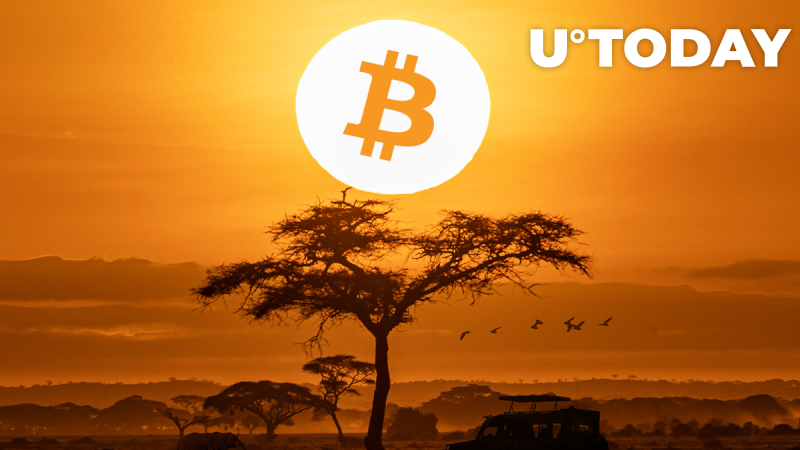 Bitcoin Trading Sees Explosive Growth in Africa in 2020