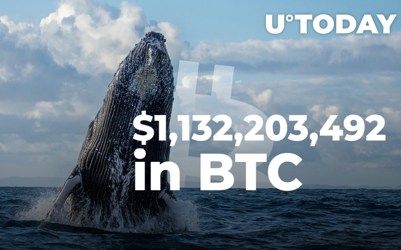 $1,132,203,492 in Bitcoin Wired by Crypto Whales Over Past Few Days, In Just Two Transactions