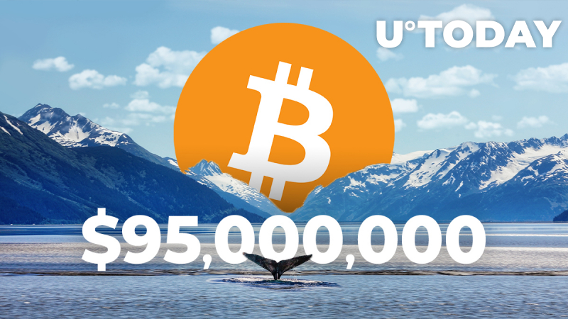 Bitcoin Whale Moves $95,000,000 In BTC Paying Less than $1 Fee