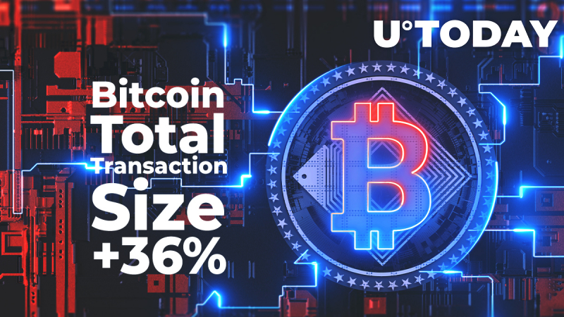 BTC Total Transaction Size Spikes 36% in Past 24 Hours While BTC Enters $10,700 Zone