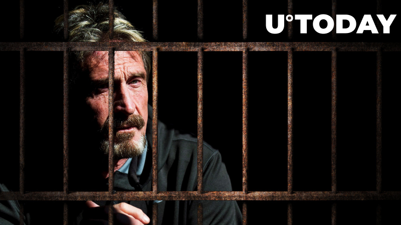 "New ""McAfee Report"" From His Prison Cell Details Peculiarities of Jail Life"