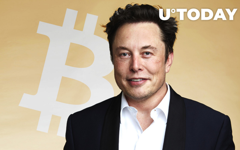 Is Elon Musk Next to Buy Bitcoin After Square and Microstrategy CEOs? Community Bets