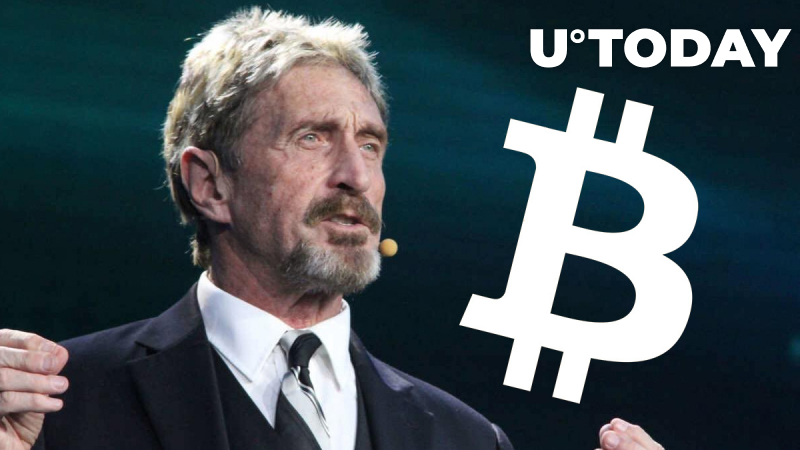 9 Hours to Go Till John McAfee's Bitcoin-Related Promise Will Never Happen