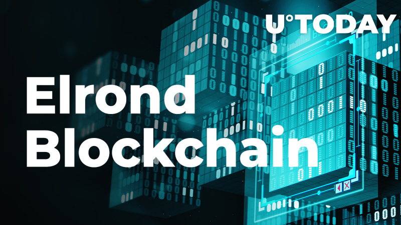 Elrond Network (EGLD) Makes Foray into U.S. Market with Voyager Integration