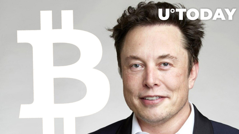 """Elon Musk on Tesla's Bitcoin Bet: """"Only a Fool Wouldn't Look Elsewhere"""""""