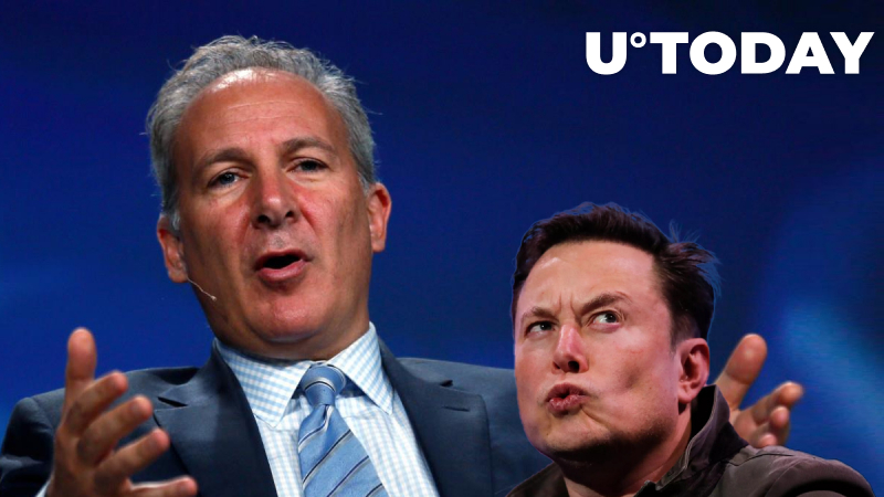 Peter Schiff Accuses Elon Musk of Pumping Crypto After His DOGE Tweet