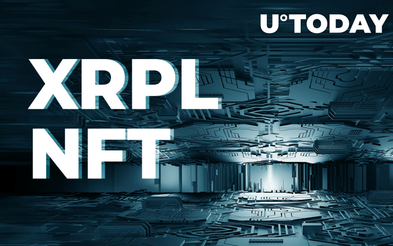 Here's How XRPL Operates NFTs: Report Released