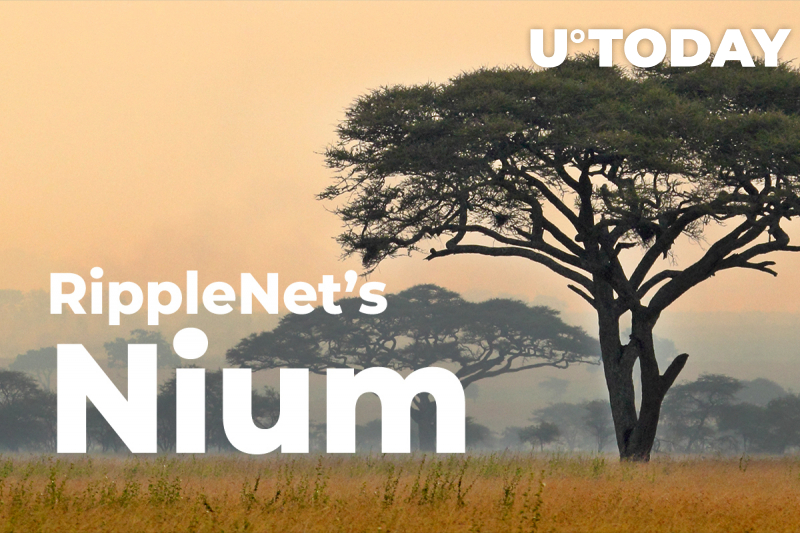 RippleNet's Nium Expands to Four Major African Countries with New Ways of Remitting Funds