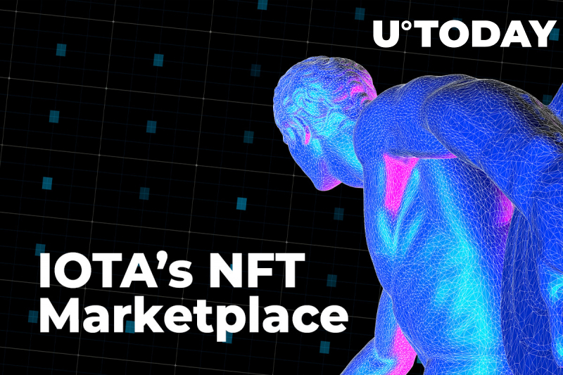 IOTA's NFT Marketplace Shares First Results: Almost 1,000 Users Onboarded in One Week