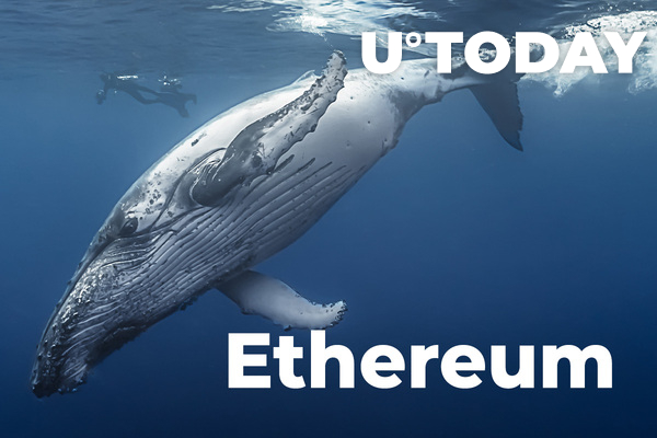 Ethereum Held by Whales Has Fallen to Its Lowest Volume since 2015: Santiment