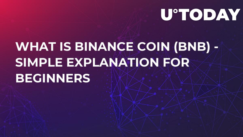 What Is Binance Coin (BNB) - Simple Explanation for Beginners