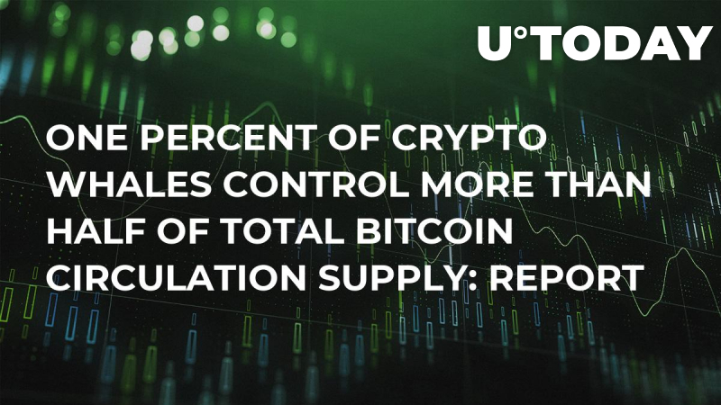 One Percent of Crypto Whales Control More Than Half of Total Bitcoin Circulation Supply: Report