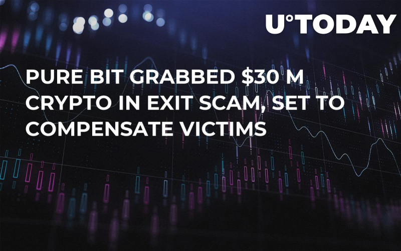 Pure Bit Grabbed $30 M Crypto in Exit Scam, Set to Compensate Victims