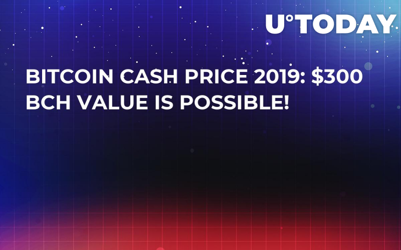 Bitcoin Cash Price 2019: $300 BCH Value Is Possible!