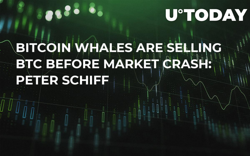 Bitcoin Whales Are Selling BTC Before Market Crash: Peter Schiff