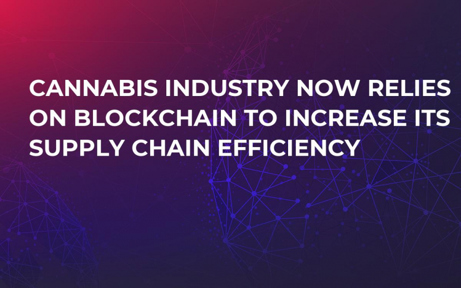 Cannabis Industry Now Relies on Blockchain to Increase Its Supply Chain Efficiency