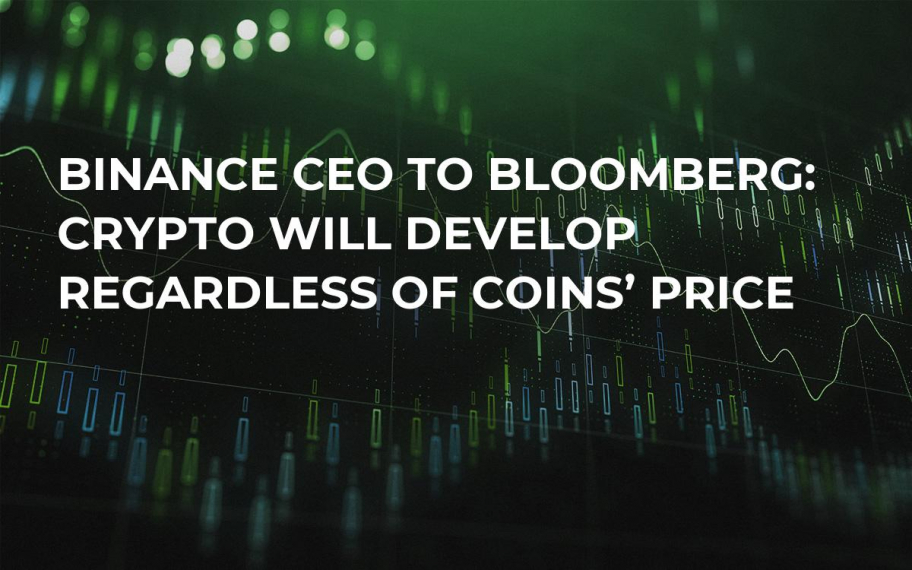Binance CEO to Bloomberg: Crypto Will Develop Regardless of Coins' Price