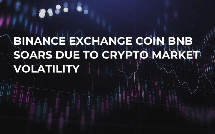 Binance Exchange Coin BNB Soars Due to Crypto Market Volatility